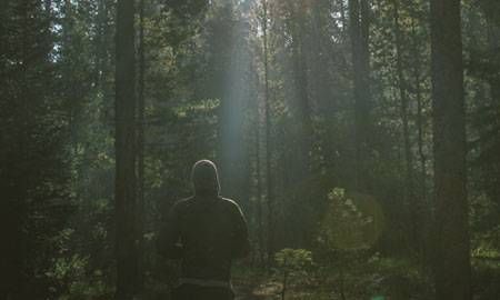 a man walks through a beautiful forest