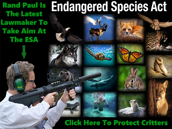 ENDANGERED SPECIES ACT AT RISK |